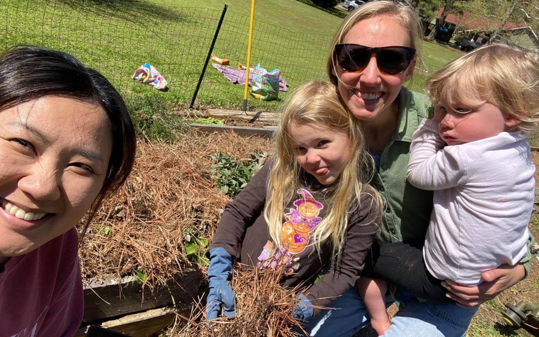 Family Garden is here!